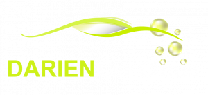 Darien Car Clinic Logo